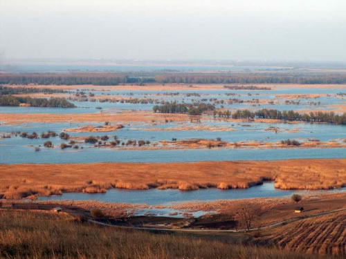 Upper Danube Delta