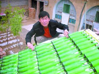 Beer Bottles to Create a Solar Water Heating System
