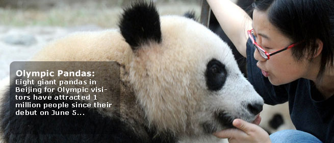 ambassadorpanda China Turns Pandas into Olympic Ambassadors
