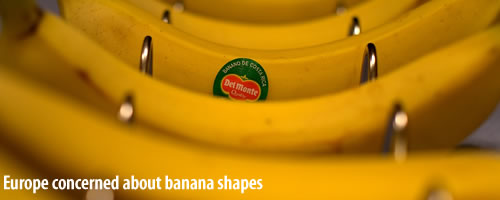 eu bananas concerns European Union   Concerned About the Length of Cucumbers and Curvature of Bananas