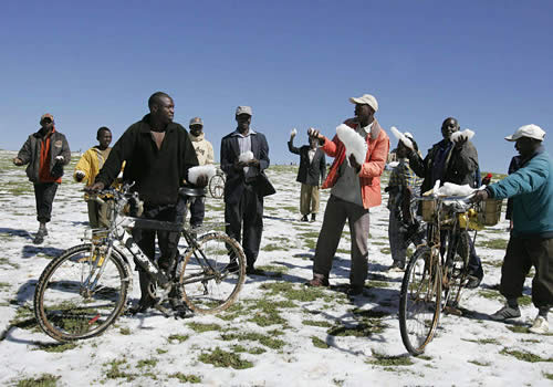 hailstorm kenya Global Cooling in Kenya?