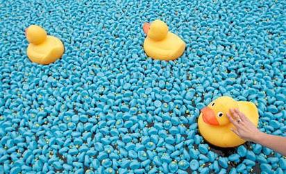 rubberduck Blue Rubber Ducks Crowd Thames with World Record Number