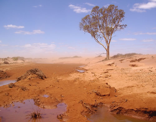 australia drought Southern Australia's Astonishing Drought