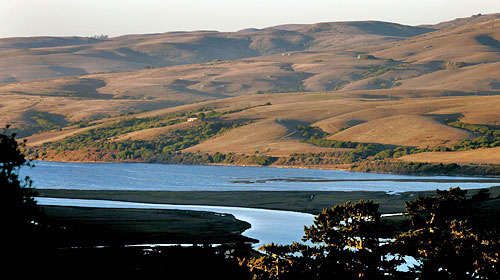 lagunitas creek and tomales bay Giacomini Wetlands in Northern California, Getting Back to Natural