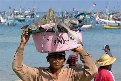 local fisherman carrying fished tuna Tuna Under Threat in SE Asia Ecosystem