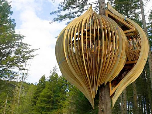yellow treehouse restaurant in new zealand 1 Yellow Treehouse Restaurant is Really Up There, in the Tree