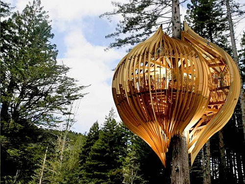 yellow treehouse restaurant in new zealand 2 Yellow Treehouse Restaurant is Really Up There, in the Tree