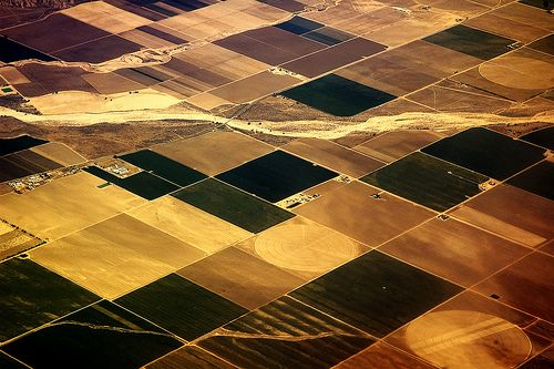 Farms in California California's Drought Threatens US wide Food Shortage