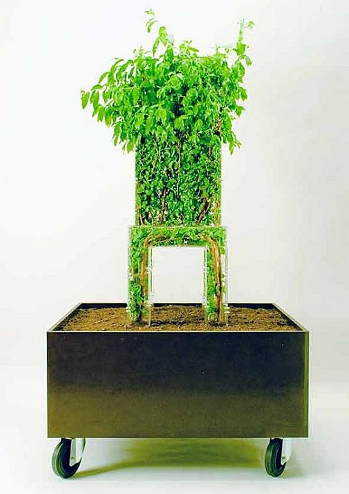 growing chair by michel bussien 1 Sitting in the lap of nature by turning plants into chairs