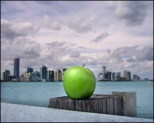 green my apple Apple Looking at a Comprehensive Green Way