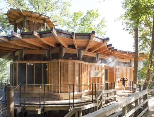 Camp Twin Lakes Green Tree House Green Treehouse Makes the Perfect Learning Environment