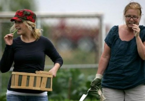 corpgarden Corporate Players Look More Towards Vegetable Patches