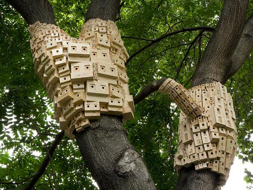 birdbox London Trees to Have Readymade Birdhouses