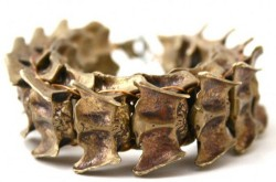 Bones and Feathers Debuts Animal-Spine Jewelry Molded From Recycled Bullet Casings 1