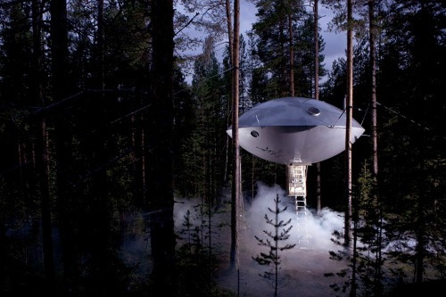 THE UFO Swedens Treehotel Adds Flying Saucer like Suite; Names it  The UFO!