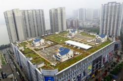 china-mall-green-roof-villas-537x373
