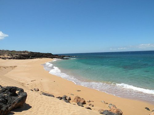 lanai Billionaire Ellison to Create Green Paradise in Hawaiian Island of Lanai