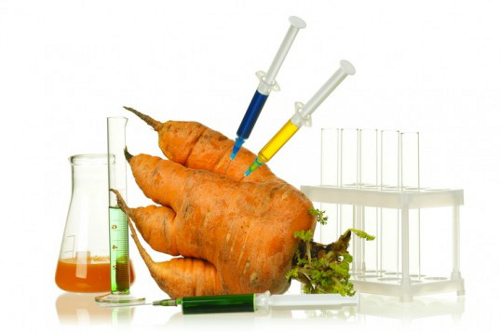carrot1 Peru Imposes 10 Year Ban on Genetically Engineered Foods