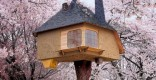 taschen-tree-house
