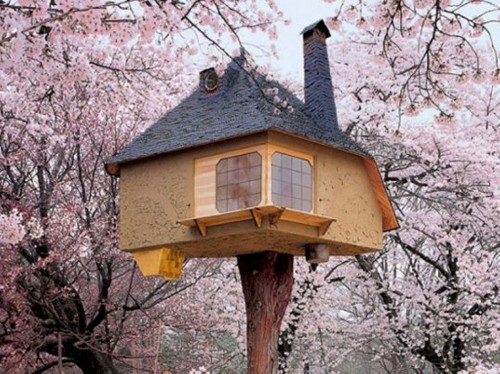 New Book Brings to You the World's 50 Best Tree Houses