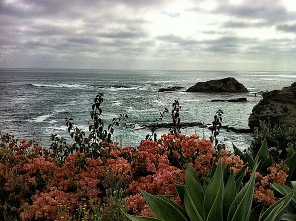 Laguna Beach CA Riding the Wave of Sustainable Tourism
