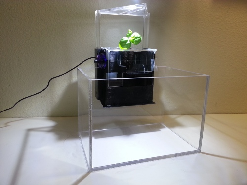 EcoQube1 Aqua Design Innovations Miniature Aquaponics Ecosystem is Awe Inspiring