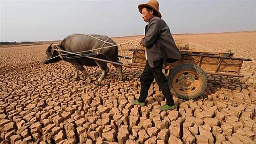 Droughts in China and Far East Climate Change To Push Another 50 Million Towards Hunger By 2050