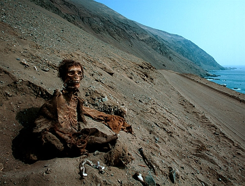 Chile Mummy Discovered by Students Middle School Students Unearth 7000 Year Old Mummy In Chile